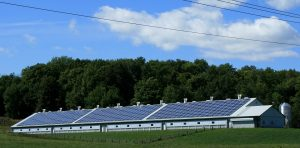 Solar panels on farm business